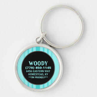 Pet ID Tag - Aqua Blue Vertical Stripes Key Ring