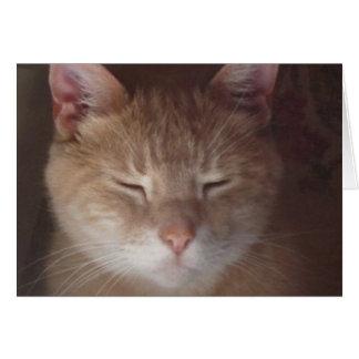 Pet loss sympathy card - greeting card