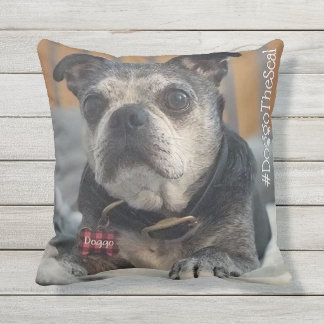Pet Lovers Hashtag with Two Photos Cushion