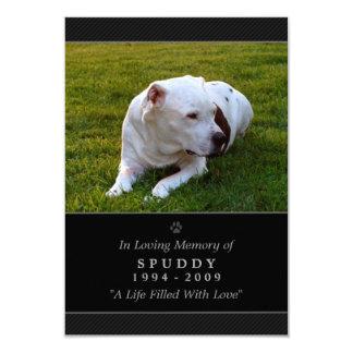 "Pet Memorial Card 3.5""x5"" Black Modern Photo 3.5"" X 5"" Invitation Card"