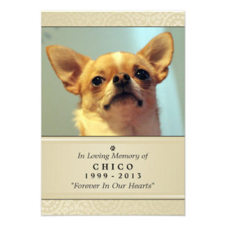 "Pet Memorial Card 3.5"" x 5"" - Creme Modern Photo"