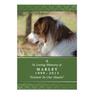 """Pet Memorial Card 3.5"""" x 5"""" - Green Modern Photo"""