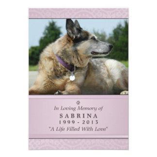 "Pet Memorial Card 3.5"" x 5"" - Pink Modern Photo"