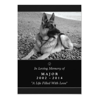 "Pet Memorial Card 5""x7"" Black Modern - Male Pet 5"" X 7"" Invitation Card"
