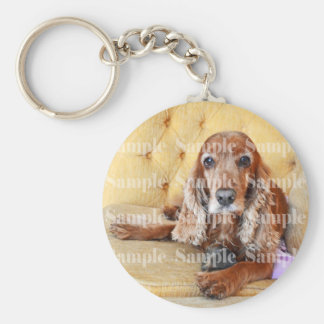 Pet memorial memory / PERSONALIZE photo Basic Round Button Key Ring