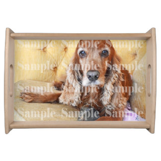Pet memorial memory photo keepsake brown serving tray