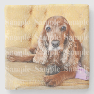 Pet memorial photo PERSONALIZE Stone Coaster