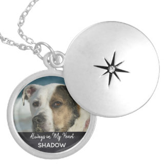 Pet Memorial Photo Tribute Keepsake Locket Necklace