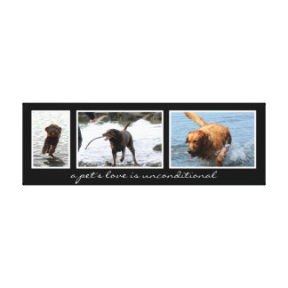 Pet Montage For Three Images Canvas Print