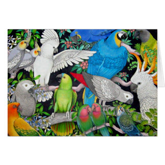 Pet Parrots of the World Card