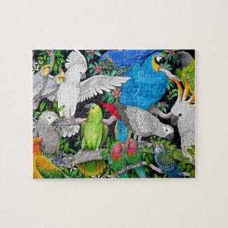 Pet Parrots of the World Puzzle