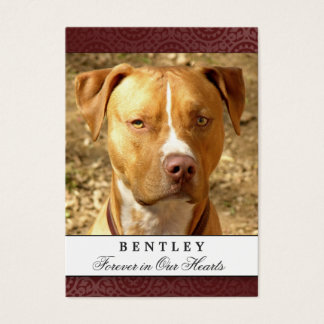 Pet Photo Memorial Card Maroon Red Prayer for Pets