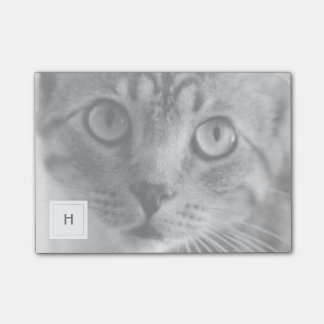 Pet Photo Personalized Monogram Post-it Notes
