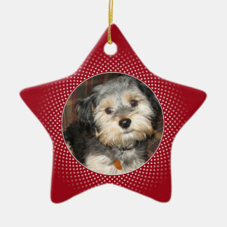 Pet Photo with Dog Bone - Double Sided Christmas Tree Ornament