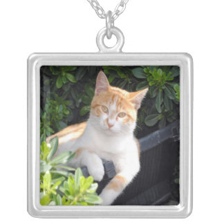 Pet Photograph Necklace