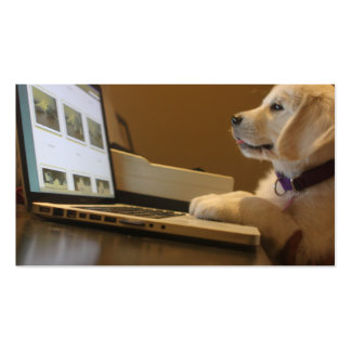 Pet photography, dog trainers, dog walkers business cards