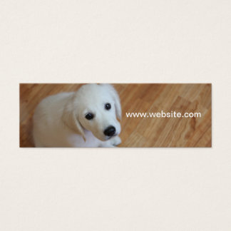Pet photography, dog trainers, dog walkers mini business card