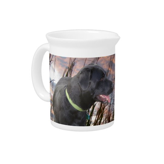 Pet Picture Pitchers! Pitcher