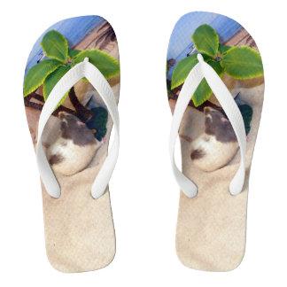 Pet Rat Mr. Bean  at the Beach Flip Flops Thongs