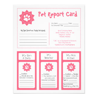 Pet Report Cards - Pink 11.5 Cm X 14 Cm Flyer