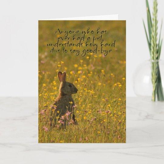 pet sympathy card loss of pet rabbit zazzle com au