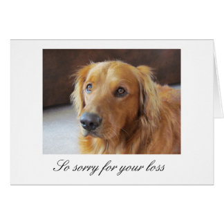 Pet Sympathy Card with Golden Retriever