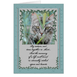 Pet Sympathy Loss of Cat | Tabby in the Grass Card