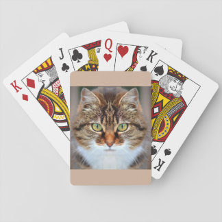 Pet Tabby Cat Playing Cards