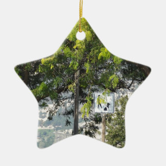 Pet Walk with Trees Christmas Ornaments