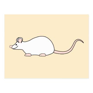 Pet White Mouse. Postcard