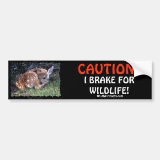 PET  & WILDLIFE PROTECTION Deer Bumper Stickers