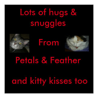 Petals and Feather snuggle poster