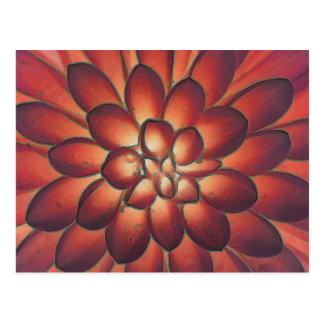 Petals Modern Abstract Floral Fine Art Postcard