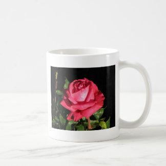 Peter Frankenfeld Hybrid Tea Rose 001 Classic White Coffee Mug
