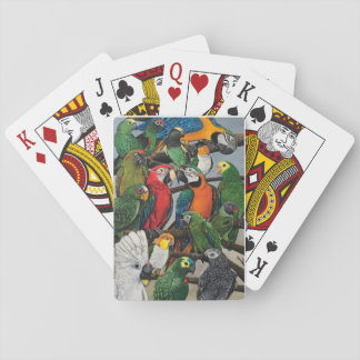 Pete's Parrots - Exotic Playing Cards