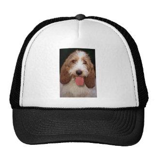 Petit Basset Griffon de Vendeen Hat
