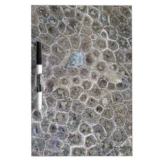Petoskey Stone, Pure Michigan! Dry Erase Board