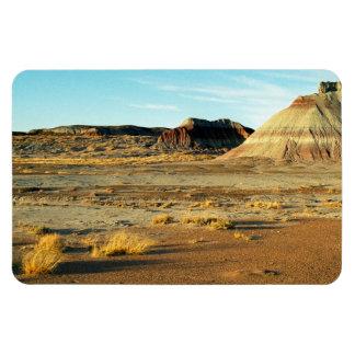 Petrified Forest Desert Rectangular Photo Magnet