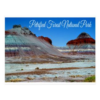Petrified Forest National Park, Arizona  Postcard