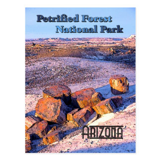 Petrified Forest Vintage Style Postcard