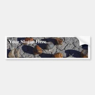 Petrified Wood Bumper Stickers