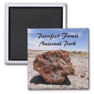 Petrified wood magnet