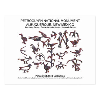 Petroglyph Bird Collection Postcard