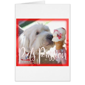Pets Passion Card