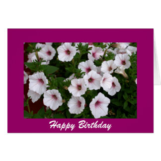 Petunia Birthday Greeting Card