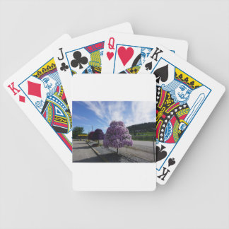 Petunia Tree at The Greenery in Kelowna Bicycle Playing Cards