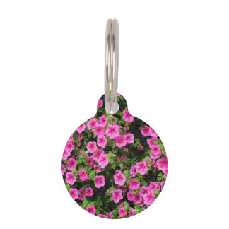 Petunias and lawn pet ID tag