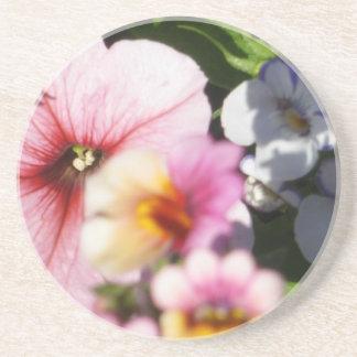 Petunias and Nemesia Beverage Coaster