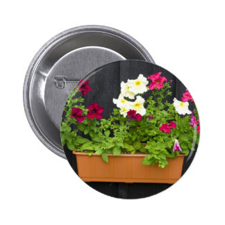 Petunias Hanging In The Pot On The Wooden Wall Pinback Buttons