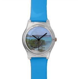 pevero beach watch